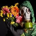 Atelier Nettoyer les toxines de l'hiver : les bienfaits des plantes