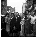 """Visite commentée de l'exposition """"Fred Stein, Paris, New York"""""""