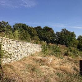 Nature en ville à Fontenay-sous-Bois
