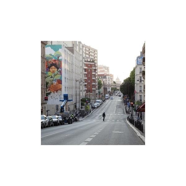 visite street art et graffiti paris dans le 13 me arrondissement. Black Bedroom Furniture Sets. Home Design Ideas