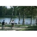 Le bois de Vincennes à bicylette