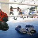 Initiation à la Boxe par les entraîneurs du pôle France à  l'INSEP - Journées du Patrimoine