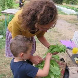 Atelier enfants : Fabrique ta jardinière de légumes avec V'ile Fertile