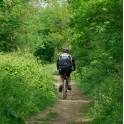 Balade à vélo vers la Tégéval